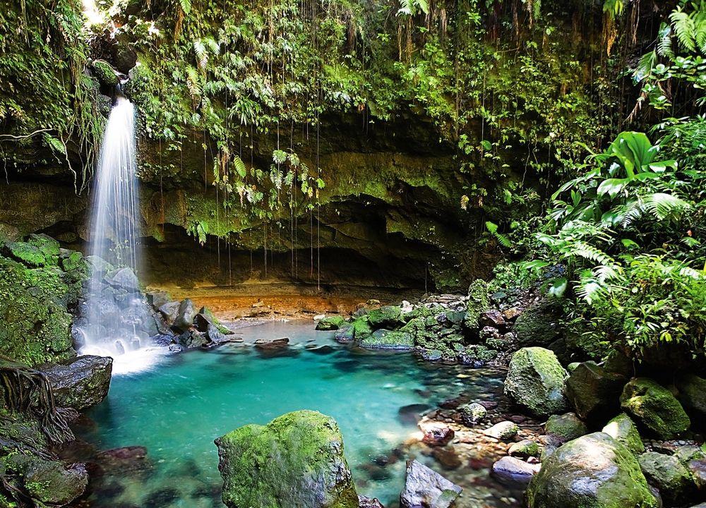 Dominica är ett tropiskt paradis där naturen är mer i fokus än på andra öar i Karibien. Dominica har stränder, men är framför allt känd för att vara lummig och grön. I djungeln inåt land finns fantastiska vattenfall och varma källor.