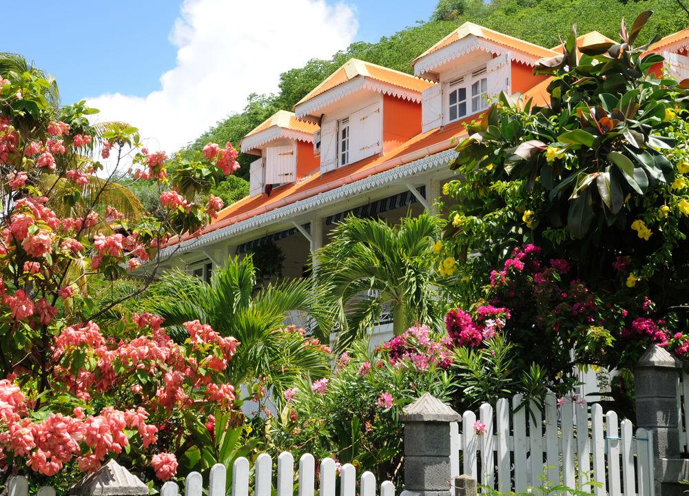 Terre-de-Haut är en liten hamn med fina, färgglada, typiskt karibiska hus. Det är trevligt att gå en sväng på shoppinggatan och upp i kvarteren längs gränderna.