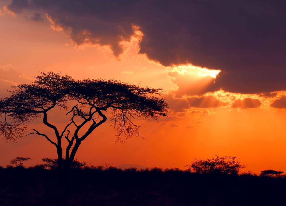 Solnedgang over Samburu