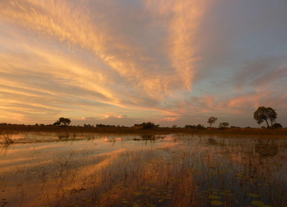 Solnedgång i Okavangodeltat
