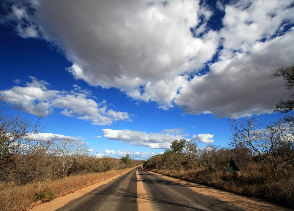 Många vägsträckor i Krugerparken är asfalterade.
