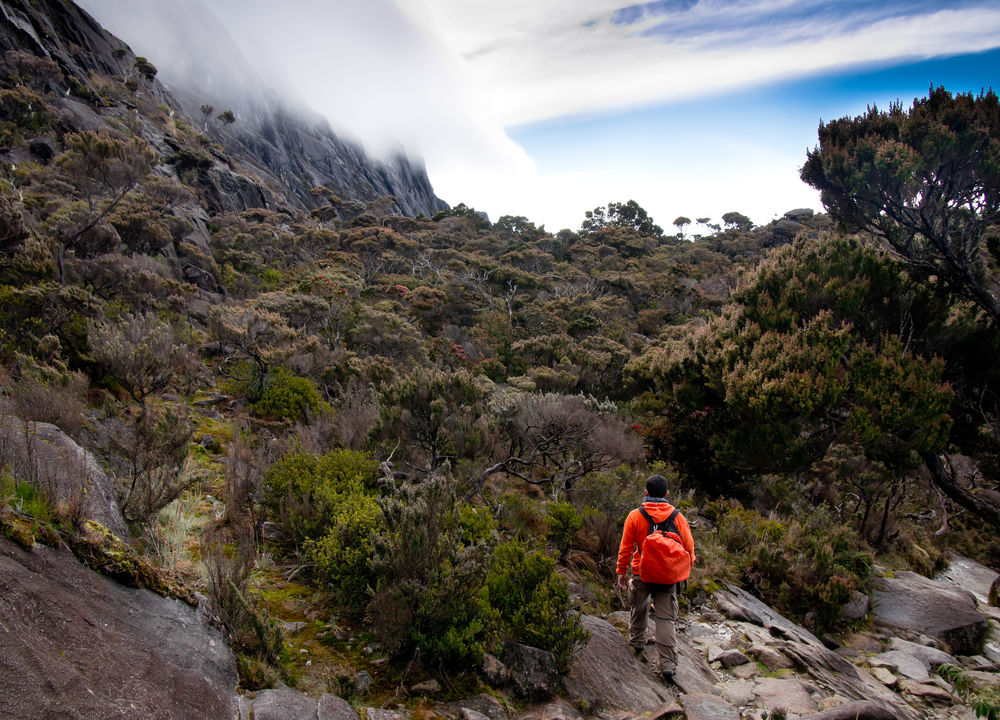 <P>Vandring vid Mt Kinabalu</P>