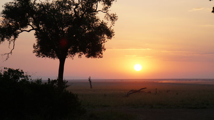 Soluppgång över Masai Mara