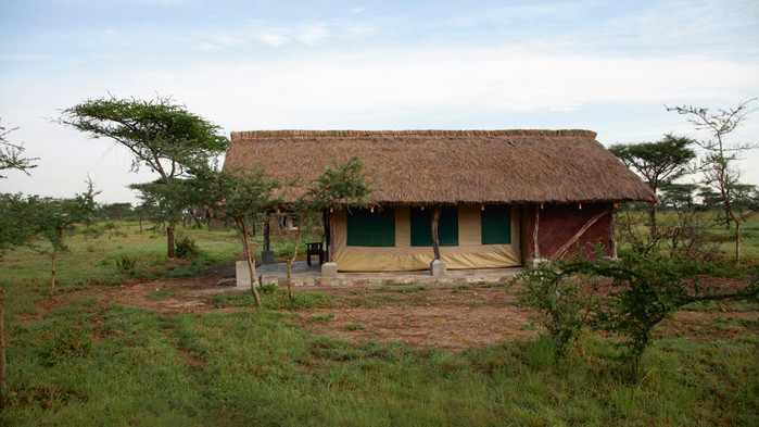 Vår teltlodge i Serengeti, Ikoma Bush Camp.