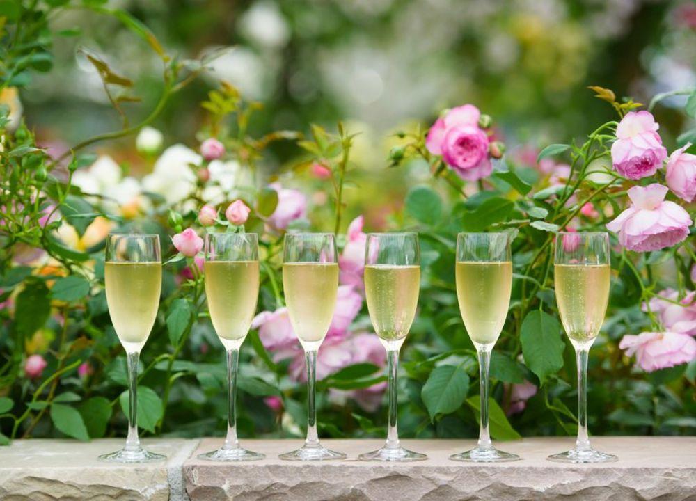 På Chelsea Flower Show serveras allt från fish & chips och wraps till hummer och champagne. Carpe diem!