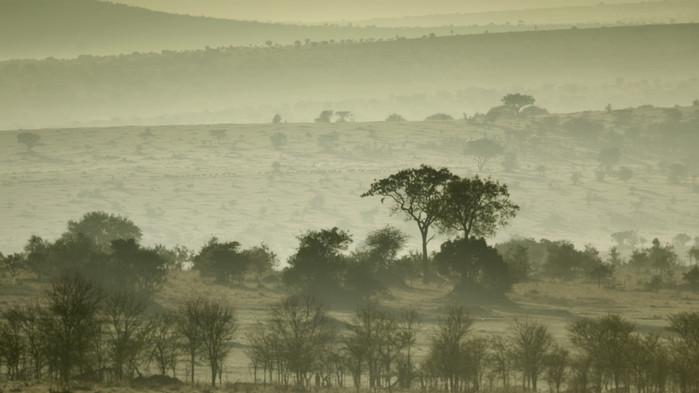 Soloppgang over Serengeti.