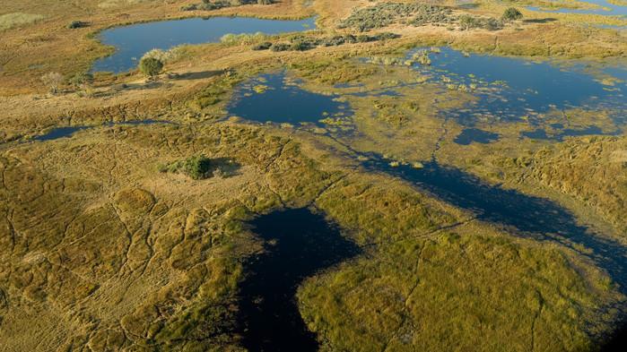 Okavangodeltat från ovan