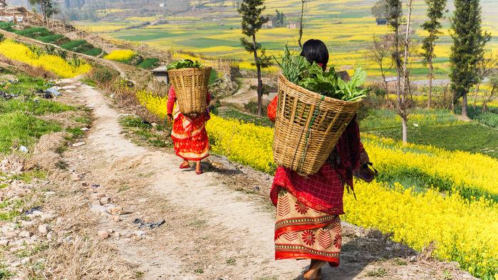 Lantliv i Nepal